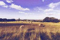 farm-ua2-jpg